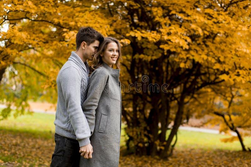 Pares novos bonitos na floresta do outono imagem de stock