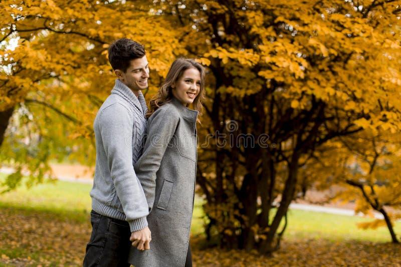 Pares novos bonitos na floresta do outono fotografia de stock royalty free