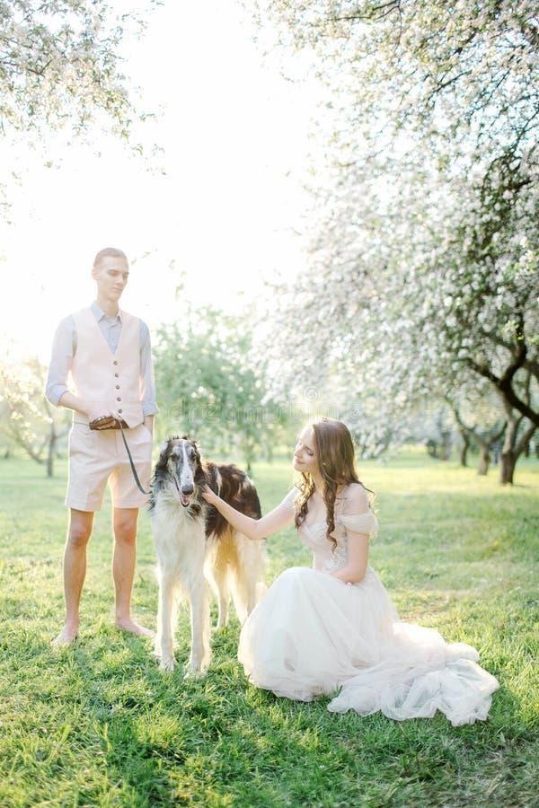 Pares novos bonitos no vestido de casamento com os galgos no parque imagem de stock