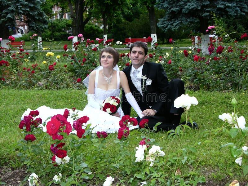 Pares novos casados fotos de stock royalty free