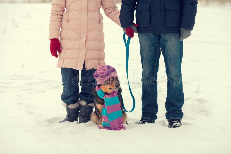 Pares novos com o cão no campo nevado imagem de stock