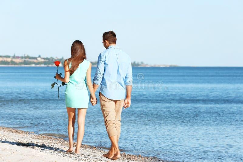 Pares novos com a rosa do vermelho que anda ao longo da praia imagem de stock