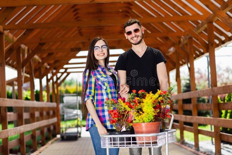 Pares novos com um transporte completamente de plantas diferentes na estufa fotografia de stock royalty free