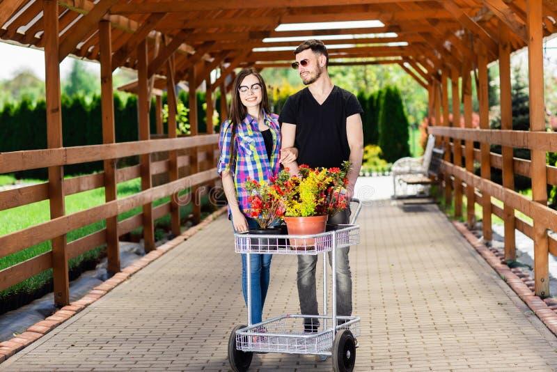Pares novos com um transporte completamente de plantas diferentes na estufa foto de stock