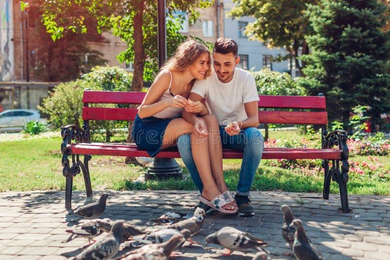 Pares novos da raça misturada em bidrs de alimentação do amor no parque do verão Pão thowing do homem e da mulher às pombas fotografia de stock