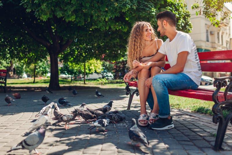 Pares novos da raça misturada em bidrs de alimentação do amor no parque do verão Pão thowing do homem e da mulher às pombas imagens de stock royalty free