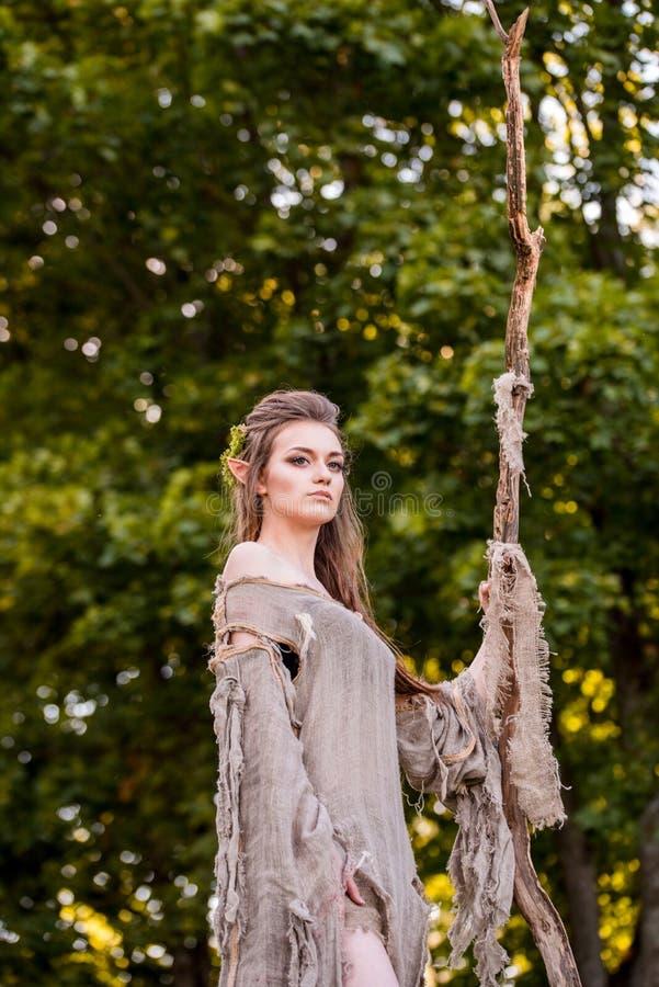 Pares novos de duendes no amor que está na floresta mágica exterior na natureza Conto de fadas dos povos do amor, do relacionamen fotos de stock