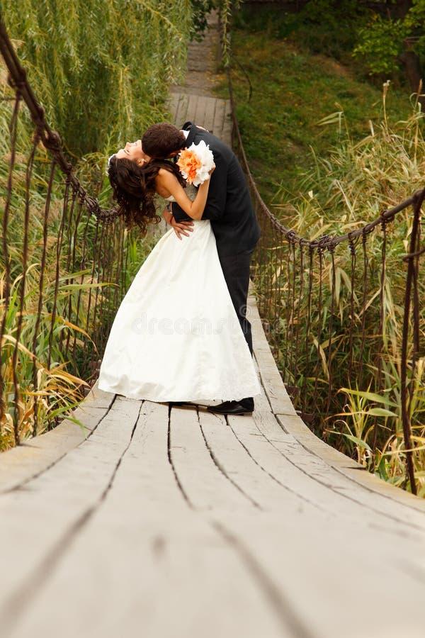 Pares novos do casamento, noiva bonita com o retrato do goom no foto de stock