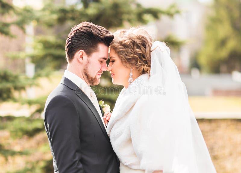 Pares novos do casamento que apreciam momentos românticos fora na natureza do outono fotografia de stock