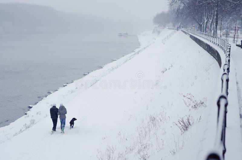Pares novos e cão adolescentes que andam ao lado do rio no inverno imagem de stock