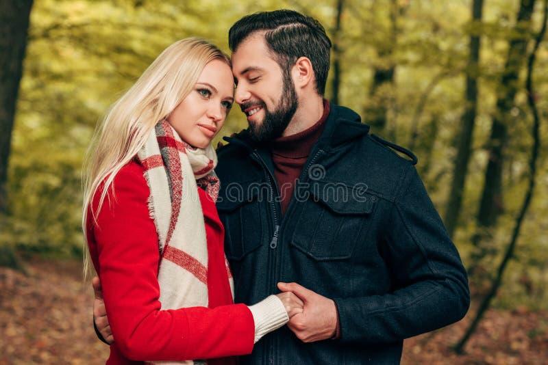 pares novos felizes bonitos que guardam as mãos no outono imagem de stock