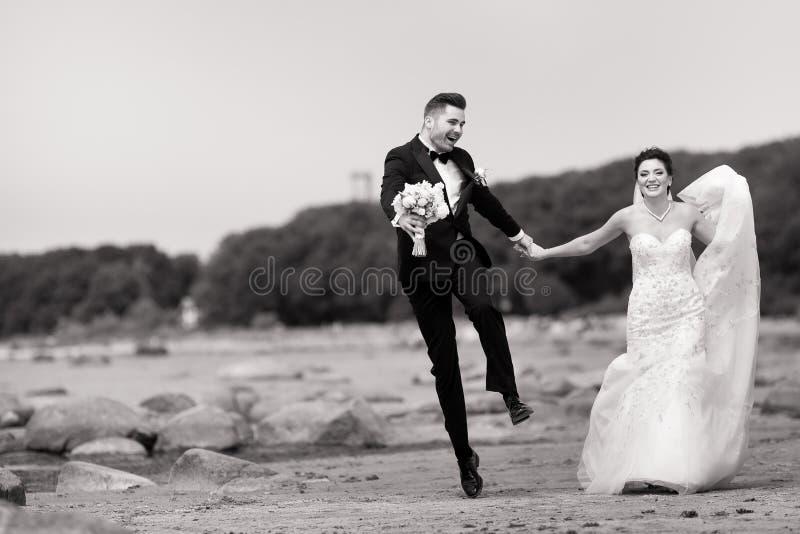 Pares novos felizes do casamento que t?m o divertimento na praia Rebecca 36 imagem de stock