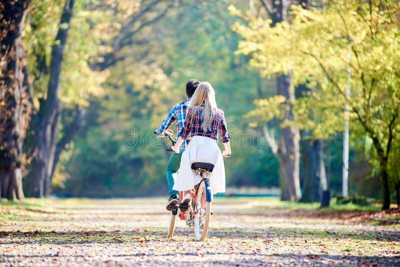 Pares novos, homem considerável e mulher atrativa na bicicleta em tandem no parque ou na floresta ensolarada do verão foto de stock royalty free