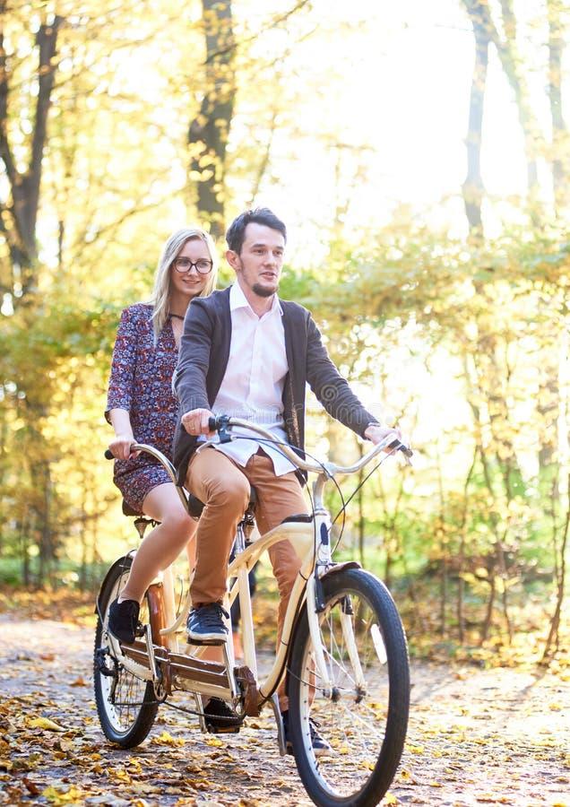 Pares novos, homem considerável e mulher atrativa na bicicleta em tandem no parque ou na floresta ensolarada do verão fotos de stock
