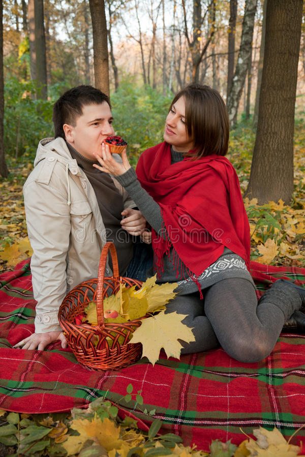 Pares novos na área de piquenique da floresta do outono fotografia de stock