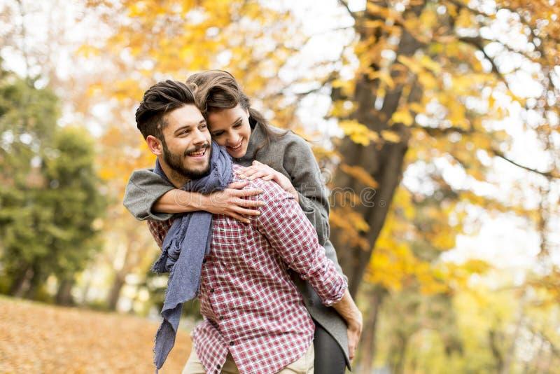 Pares novos na floresta do outono imagens de stock