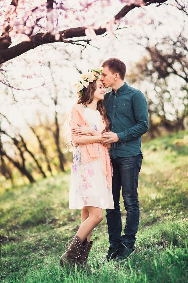 Pares novos no amor que tem uma data sob árvores cor-de-rosa da flor imagem de stock royalty free