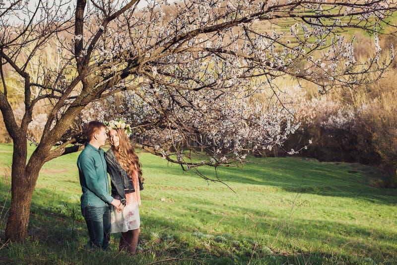 Pares novos no amor que tem uma data sob árvores cor-de-rosa da flor fotografia de stock