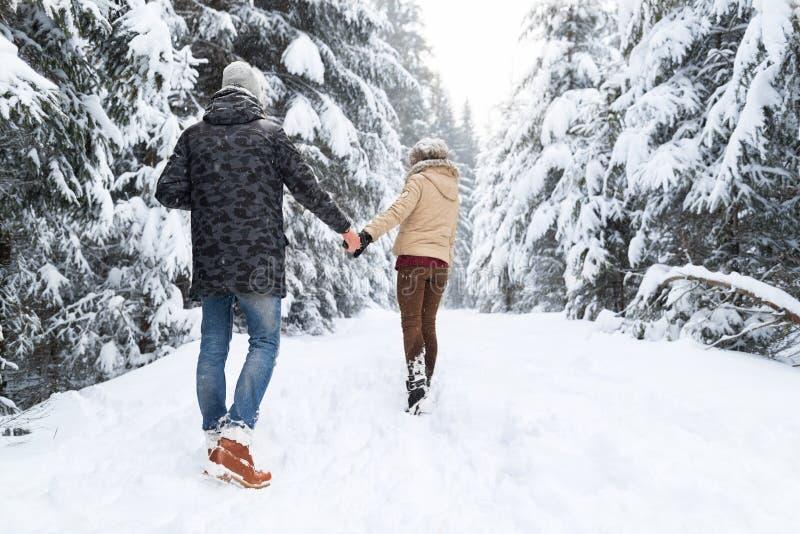 Pares novos que andam na neve Forest Outdoor Man And Woman que guarda a opinião traseira das mãos imagens de stock