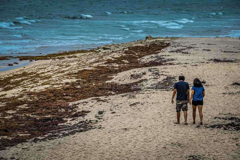 Pares novos que andam no vento na praia imagens de stock royalty free