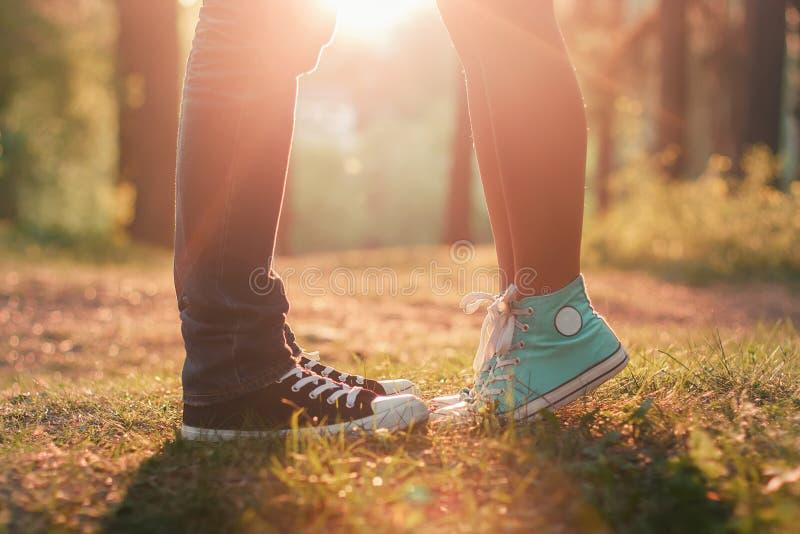Pares novos que beijam na luz do sol do verão imagens de stock royalty free