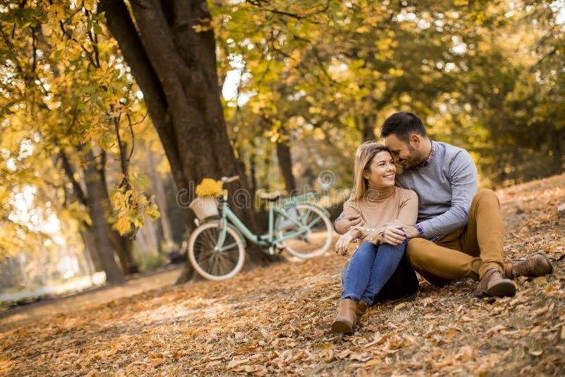Pares novos que sentam-se na terra no parque do outono fotografia de stock royalty free