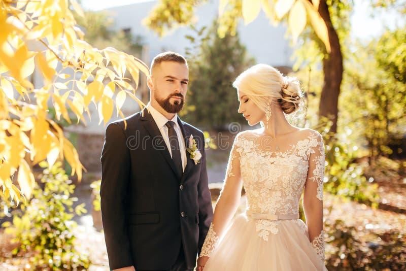 Pares nupciais, mulher feliz do recém-casado e homem abraçando no parque do outono fotos de stock