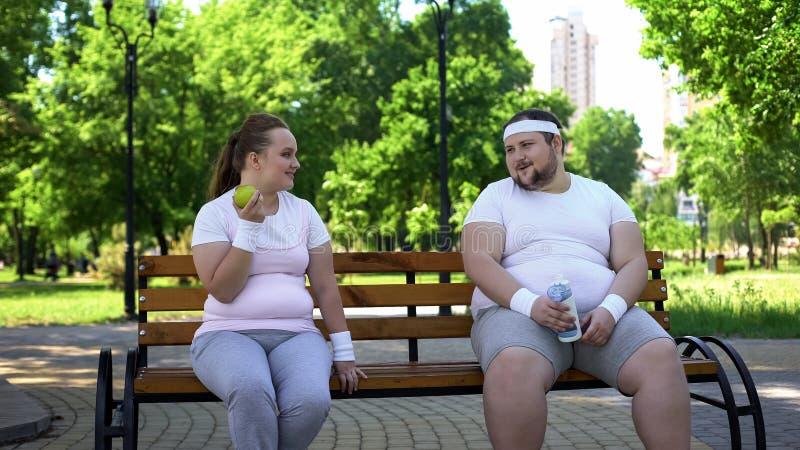Pares obesos que discutem a dieta, nutrição saudável, interesse comum na perda de peso imagens de stock royalty free