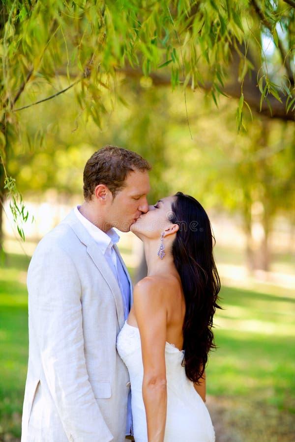 Pares que beijam no parque ao ar livre da lua de mel fotos de stock royalty free