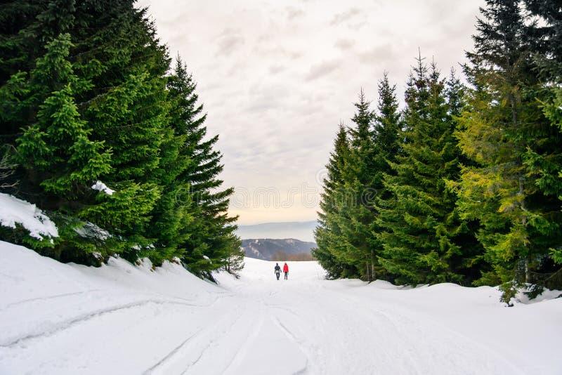 Pares que caminham na montanha coberto de neve fotos de stock royalty free