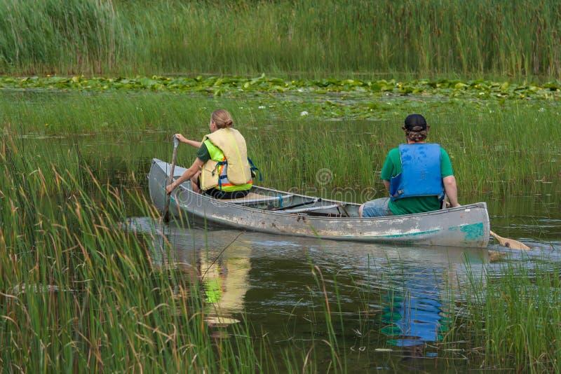 Pares que Canoeing no pântano foto de stock royalty free