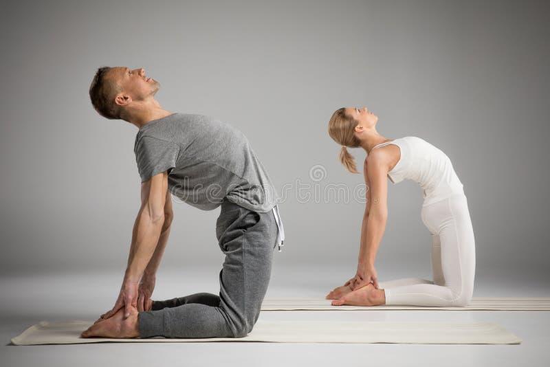 Pares que estão na pose da ioga imagem de stock royalty free