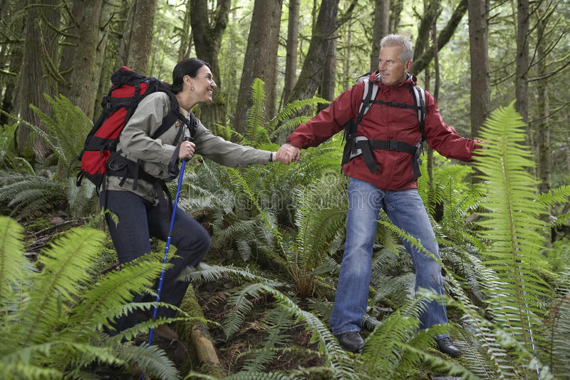 Pares que guardam as mãos e que andam na floresta foto de stock royalty free