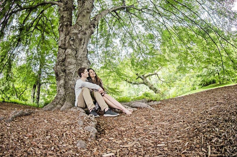 Pares que hablan debajo de un árbol grande fotos de archivo