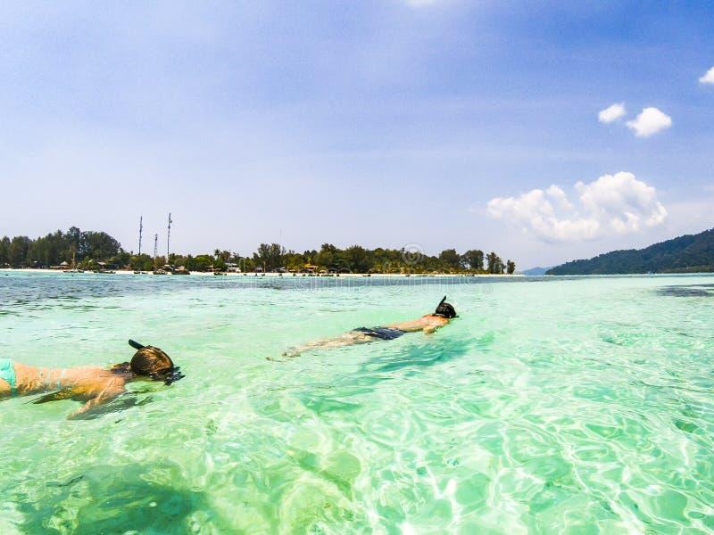 pares que mergulham no mar azul claro fotografia de stock