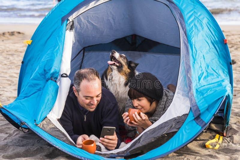 Pares que miran el teléfono elegante y divertirse dentro de una tienda en acampar libre en el border collie del perro de la playa imagenes de archivo