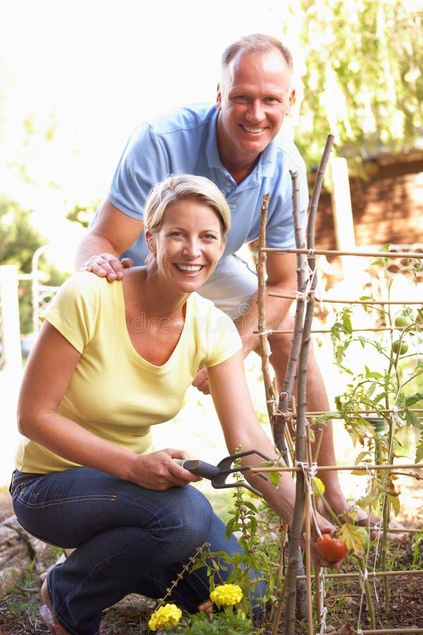 Pares que relaxam no sorriso do jardim fotografia de stock royalty free