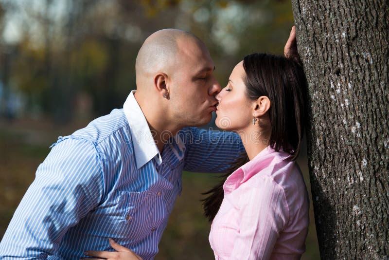 Pares que se besan en bosque imágenes de archivo libres de regalías