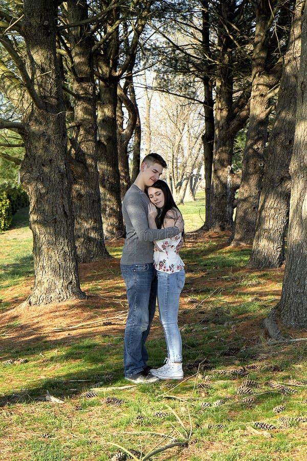 Pares que se detienen brevemente para el afecto entre los árboles de pino altos que llevan a cabo las manos fotografía de archivo libre de regalías