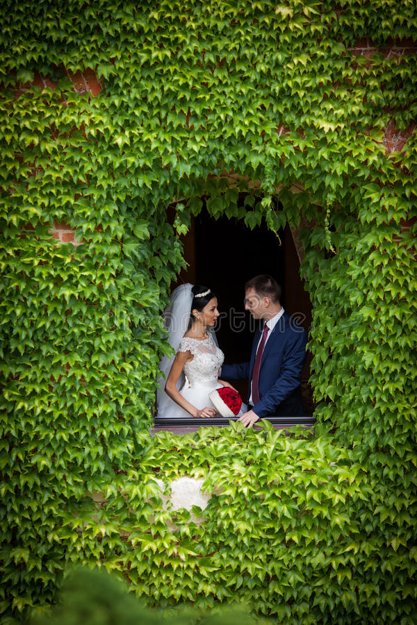 Pares románticos del recién casado del cuento de hadas de los valentynes que presentan en una n o imagenes de archivo