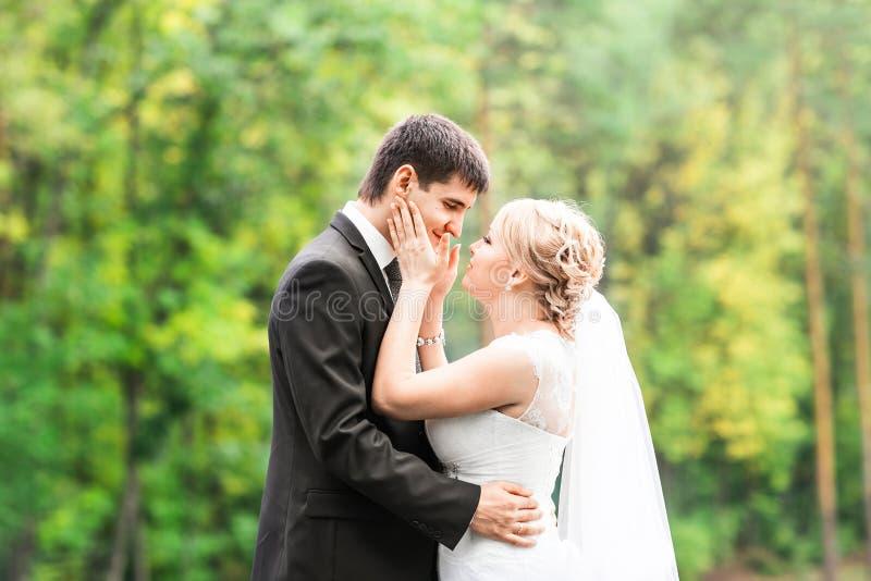 Pares románticos hermosos de la boda que se besan y que abrazan al aire libre foto de archivo