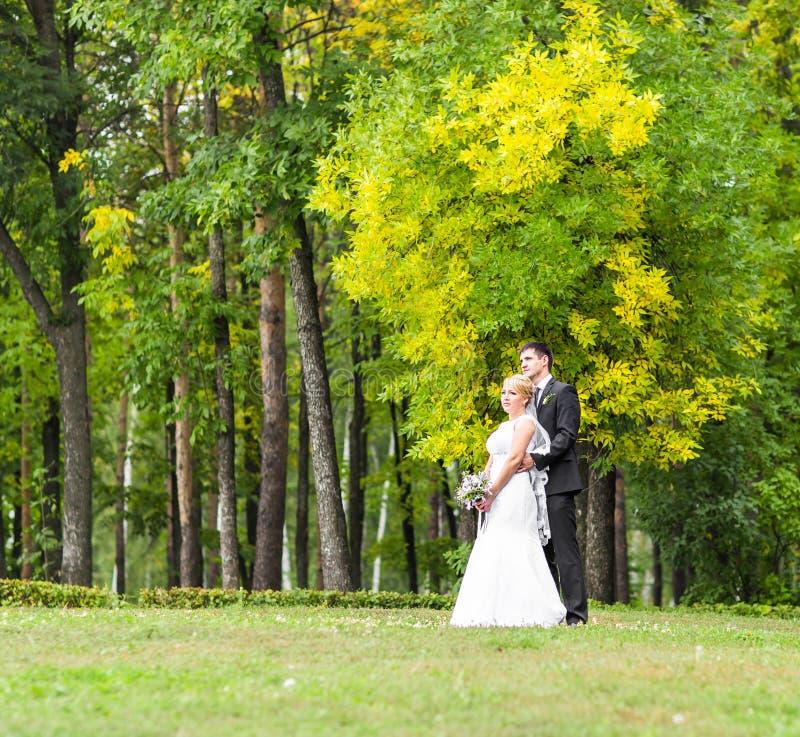 Pares románticos hermosos de la boda que se besan y que abrazan al aire libre fotografía de archivo libre de regalías