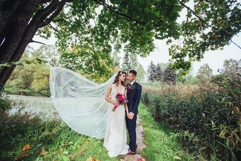 Pares românticos do casamento no parque no dia do casamento Noivo Hugging Bride foto de stock royalty free