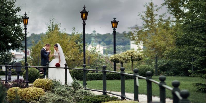 Pares românticos do recém-casado, mão de beijo da noiva do noivo em p europeu fotos de stock