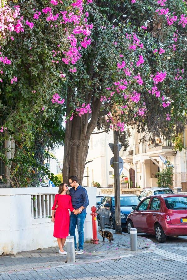 Pares românticos na roupa brilhante e nos óculos de sol que guardam as mãos, o sorriso e a posição sob a árvore de florescência n fotos de stock royalty free
