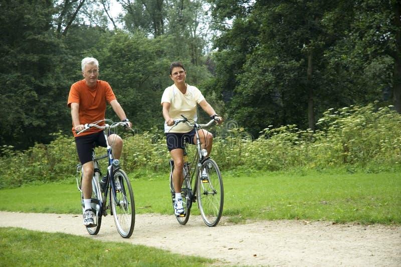 Pares sênior Biking fotografia de stock royalty free