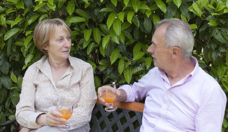 Pares sênior no jardim fotografia de stock royalty free