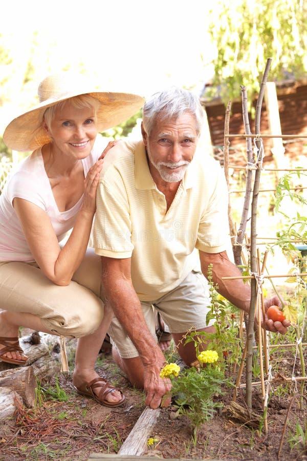 Pares sênior que relaxam no jardim fotografia de stock royalty free
