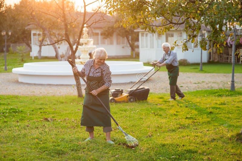 Pares sênior que trabalham no jardim fotografia de stock royalty free