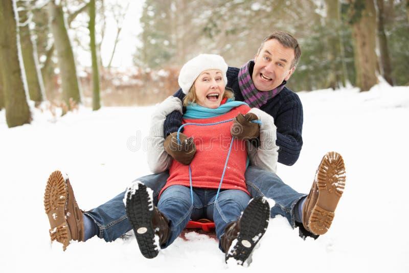 Pares sênior Sledging através da floresta nevado imagem de stock royalty free